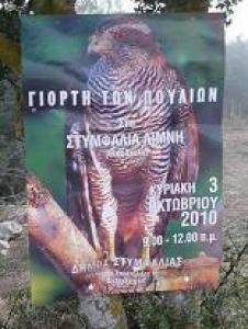 Celebration of Birds in 2010 Stymfalia